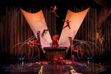 Cirque du Soleil — Varekai