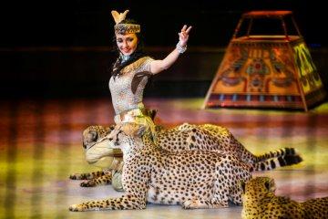 Новогоднее цирковое шоу «Тринадцать месяцев»